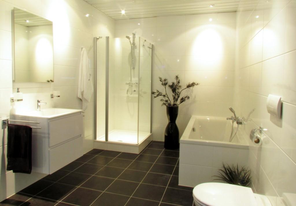 Moderne badkamer voorbeelden en idee n - Badkamer kleur idee ...