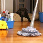 Het onderhouden van uw vloer